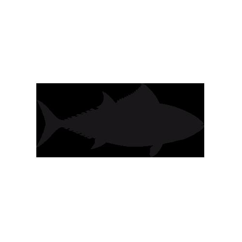 Bigeye tuna black thumbnail